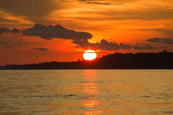 Afirman que el Sol tiene gran impacto en el equilibrio marino