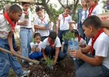 Desarrollan en Camagüey proyectos comunitarios de educación ambiental