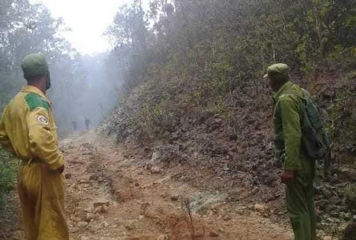 Controlan foco de incendio forestal en el Parque Nacional Alejandro de Humboldt
