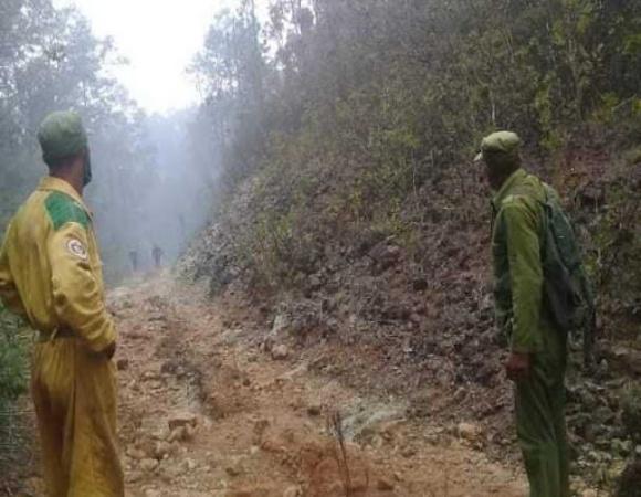Cuba mantiene vigilancia para evitar proliferación de incendios forestales