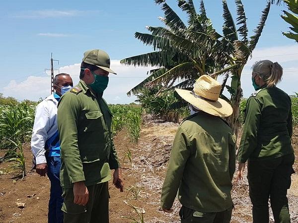 Constatan autoridades camagüeyanas avances del autoabastecimiento territorial en el municipio de Florida (+ Fotos)