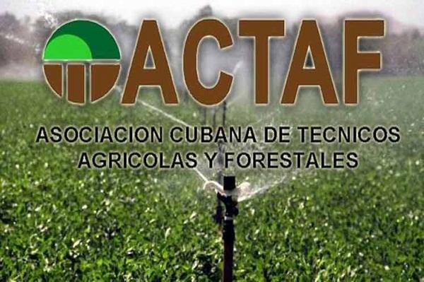 Por mayor eficiencia en el 2020 se proyectan Técnicos Agrícolas y Forestales camagüeyanos