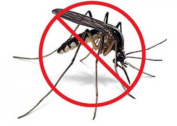 Cuba refuerza vigilancia y control ante incremento de arbovirus en las Américas