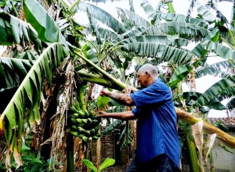 La agricultura como fuente de vida