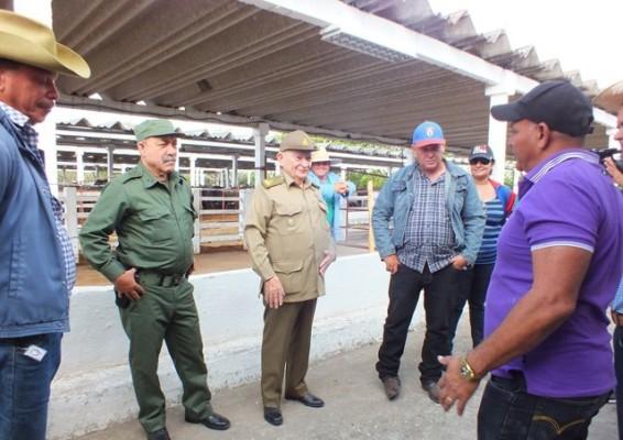 Entre los sitios visitados estuvo el cebadero El Macho, de la Empresa Pecuaria Maraguán.