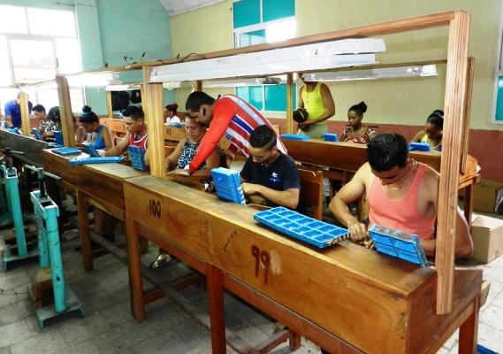 Impulsa Camagüey cultivo de tabaco con fines exportables