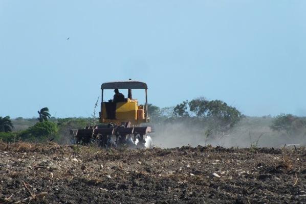 Continúa en Camagüey fomento de polos productivos y ejecución de obras sociales (+ Fotos)