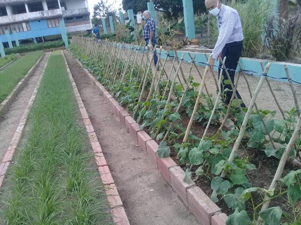 Universidad de Camagüey contribuye con la producción de alimentos