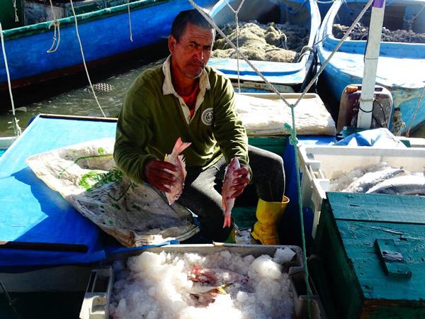 Buen aporte de pescadores de Santa Cruz del Sur