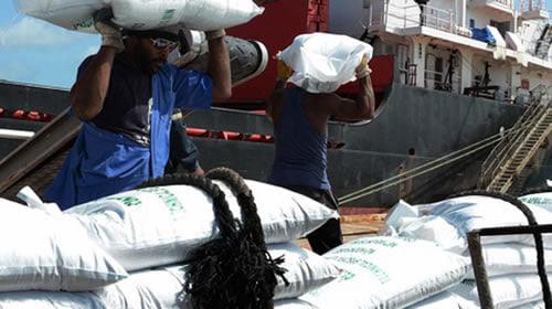 Agilizan descarga del arroz para la canasta normada en el puerto de Nuevitas