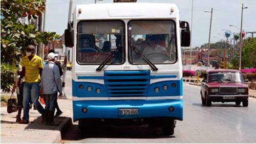 Restablecen de manera parcial transporte urbano en el municipio de Camagüey (+ Post)