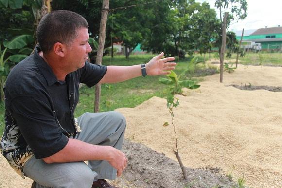 El cultivo de la uva exige un tratamiento especial.