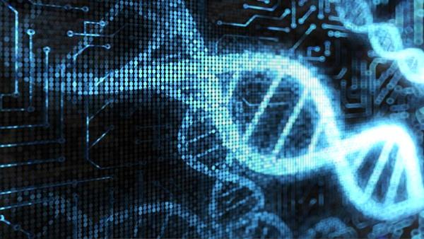 Reproducen por vez primera imágenes grabadas en ADN
