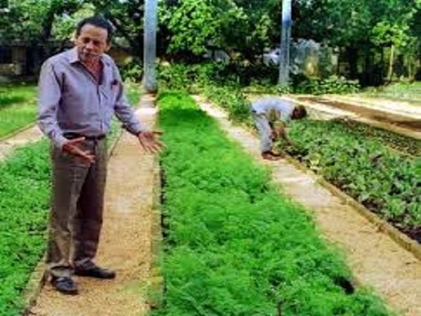 Socializan experiencias del especialista Adolfo Rodríguez Nodals en taller sobre agricultura sostenible