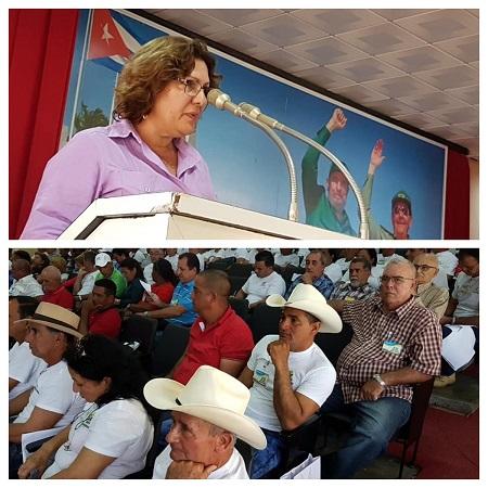 Productores cubanos evalúan en Camagüey programa de la agricultura suburbana
