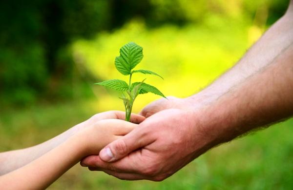 Impulsa Camagüey programa de agricultura familiar