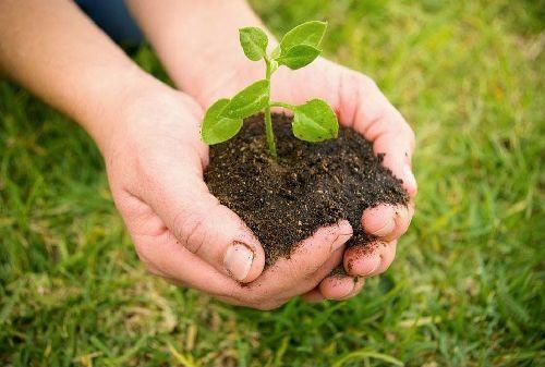 Analiza Congreso Agrario impacto del cambio climático