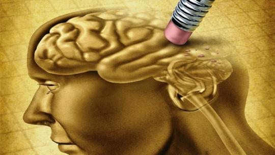 El alzhéimer podría tener su origen fuera del cerebro, revela estudio