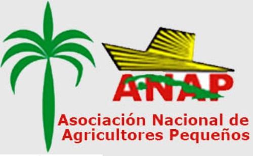 Resaltan funcionamiento de organizaciones campesinas en Cuba