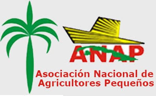 Destacan en Camagüey papel de la ANAP a 56 años de su fundación