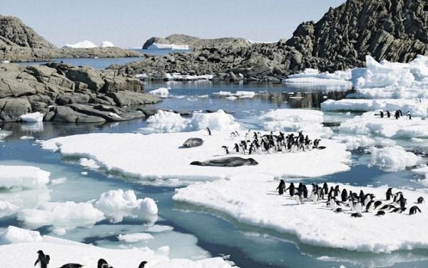 Se acelera el deshielo en la Antártida occidental