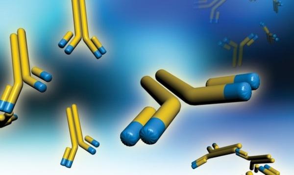 Diseñan anticuerpo monoclonal para diagnóstico de Fibrosis Quística