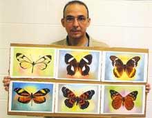 Colores y pinceles traen nuevo mensaje de Antonio Guerrero