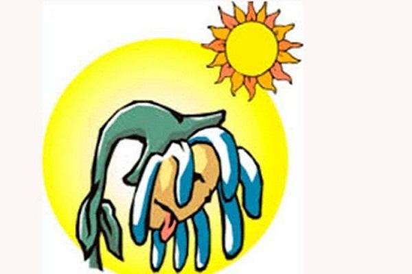 Pronostican en Camagüey tarde cálida y aisladas lluvias