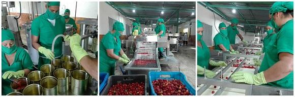 Minindustria en Sierra de Cubitas contribuye a sustituir importaciones en Camagüey
