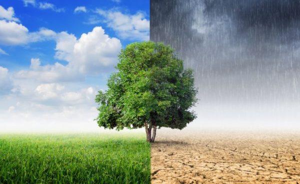 Cambio climático: el mayor desafío que enfrenta la humanidad
