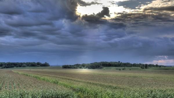 Bienvenida la lluvia en los campos camagüeyanos