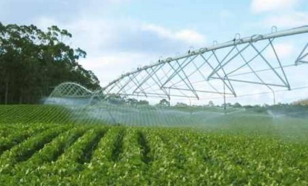 Analizan en Cuba gestión de Ingeniería Agropecuaria en 2017
