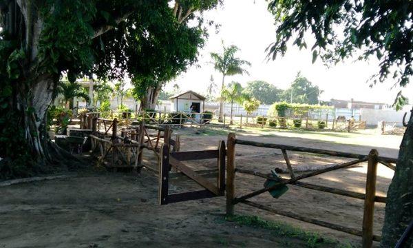 Reparan en Camagüey centro de equinoterapia para rehabilitación de niños con necesidades especiales