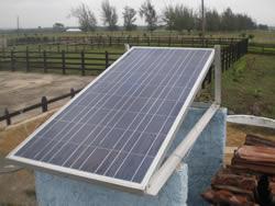 Continúa en Camagüey instalación de cercas eléctricas para ganadería