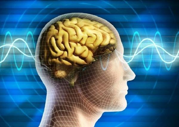 Intercambiarán experiencias neurocientíficos británicos y cubanos