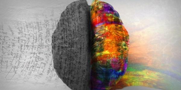Descubren cómo el cerebro transforma la información en pensamiento consciente