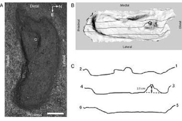 Huella humana hallada en Chile es la más antigua de América
