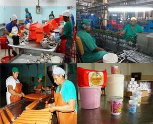 Industria Alimentaria de Camagüey aplica medidas para ahorrar portadores energéticos