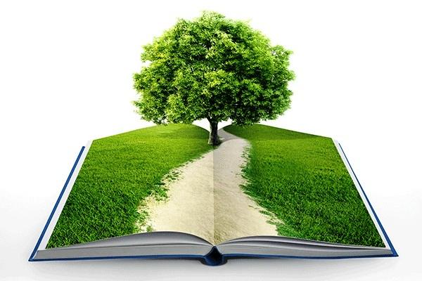 Conciencia ambiental por un futuro más verde