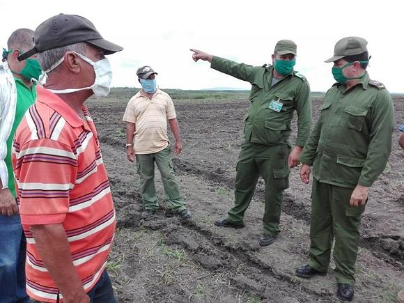 Recorre Consejo de Defensa Provincial áreas productivas del municipio de Santa Cruz del Sur (+ Fotos)