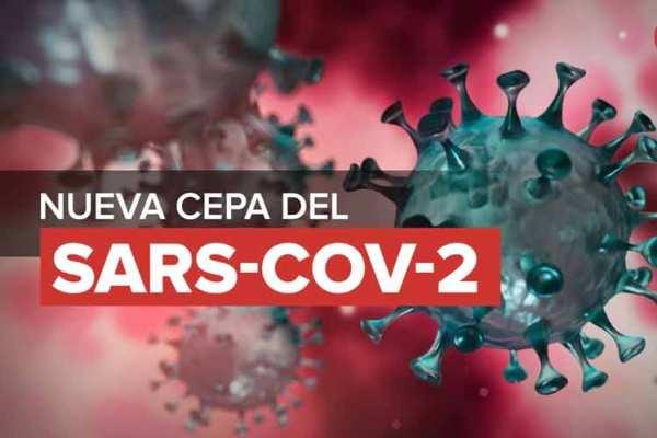 Ratifican autoridades sanitarias presencia en Camagüey de cepa sudafricana del SARS-CoV-2 (+ Foto y Gráficos)