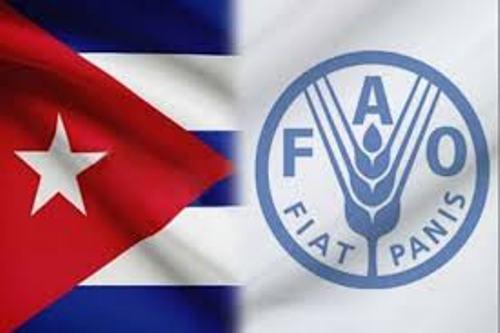 Elogia la FAO atención de Cuba al sector agrícola y alimentario