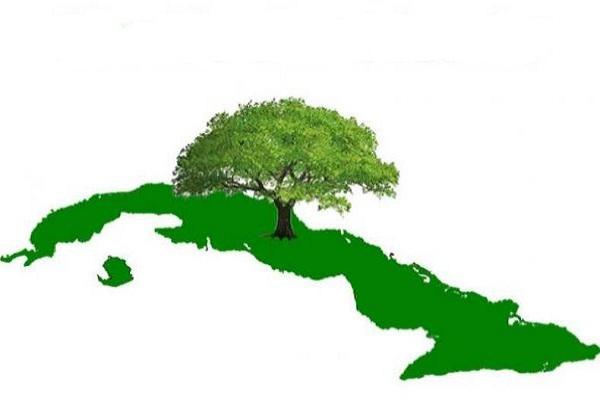 Destacan resultados de Cuba en enfrentamiento a la desertificación y sequía