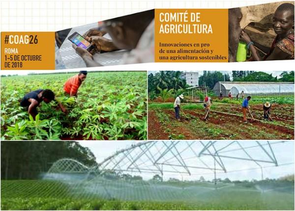 Reelecta Cuba para Vicepresidencia del Comité de Agricultura de la FAO