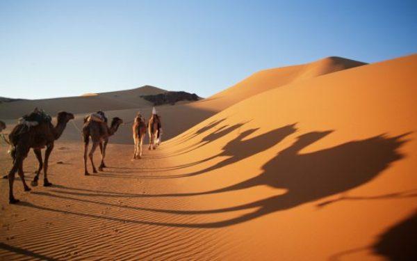 El desierto del Sahara pudiera ser consecuencia de la acción humana