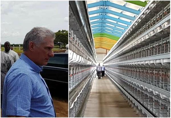 Visita Díaz-Canel centros de interés económico y científico en municipio de Camagüey (+Audio y fotos)