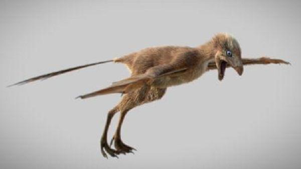 Científicos chinos descubren fósil de dinosaurio con alas de murciélago