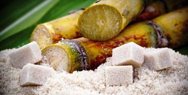 Expertos debatirán en Cuba sobre la producción de azúcar y sus derivados