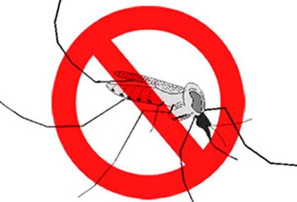 Adoptan en Camagüey medidas para impedir entrada del zika