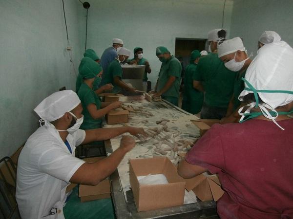 Colectivo de empacadora en Camagüey comprometido con la alimentación del pueblo (+ Audio y Fotos)